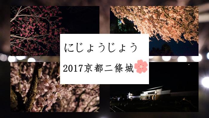 【2017日本賞櫻】 元離宮二條城燈光秀,京都夜櫻必去景點