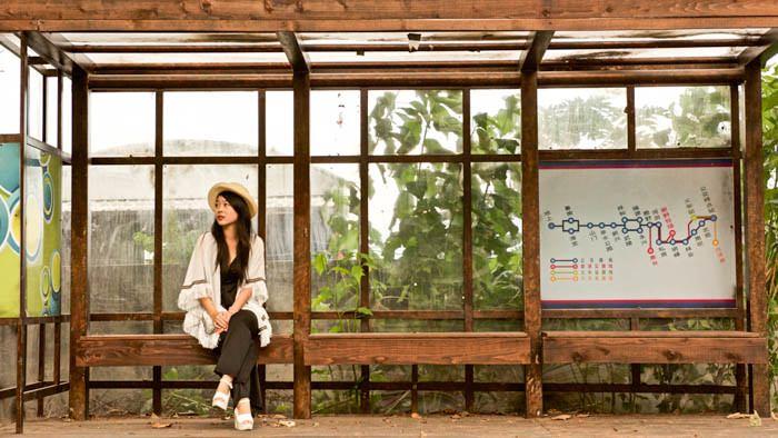 台東│樂活鹿野鄉,武陵綠色隧道鐵馬行,2626市集、五彩手工饅頭